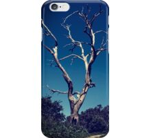Lonesome tree iPhone Case/Skin