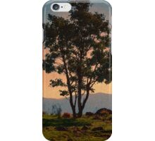 Sunset vista iPhone Case/Skin