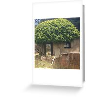 A tiny abandoned tree house. Greeting Card