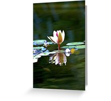 bright light Greeting Card