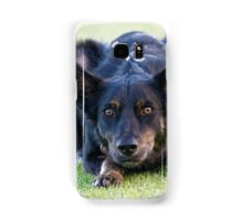 Sheepdog stare competition, you loose. Samsung Galaxy Case/Skin