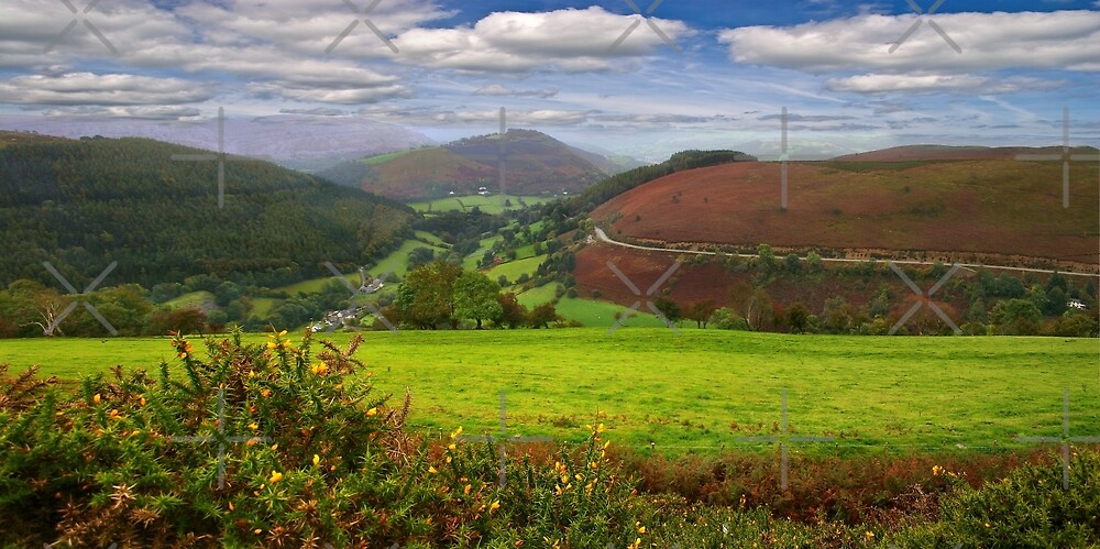 Looking down Horseshoe Pass by Geoff Carpenter