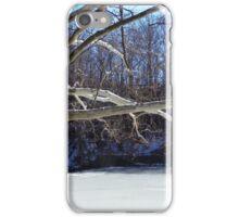 Winter at Lake Glacier iPhone Case/Skin