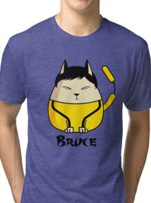 Bruce the Cat Tri-blend T-Shirt