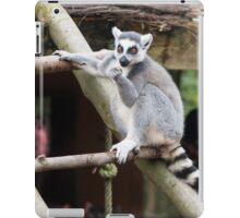 Peaceful Lemur - Nature Photography iPad Case/Skin