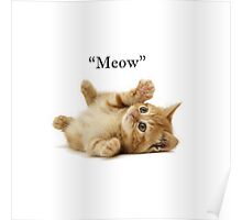"""Cat """"meow"""" Poster"""