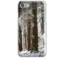 Beautiful icy forest lanscape view, winter time iPhone Case/Skin