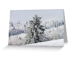 Beautiful snow-covered fir trees in winter forest, french mountains Greeting Card
