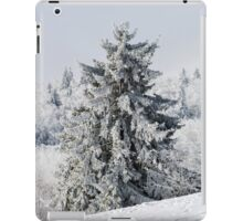 Beautiful snow-covered fir trees in winter forest, french mountains iPad Case/Skin