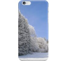 Beautiful perspective natural landscape with frosty trees, winter fairy tale iPhone Case/Skin