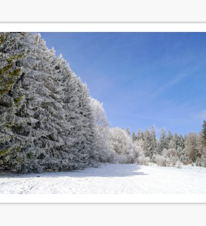 Beautiful perspective natural landscape with frosty trees, winter fairy tale Sticker