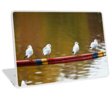 Birds Balancing on the Line - Nature Photography Laptop Skin