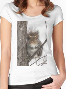 Large Grey Squirrel in a tree Women's Fitted Scoop T-Shirt