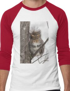 Large Grey Squirrel in a tree Men's Baseball ¾ T-Shirt