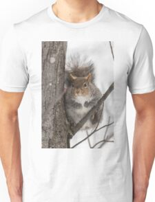 Large Grey Squirrel in a tree Unisex T-Shirt