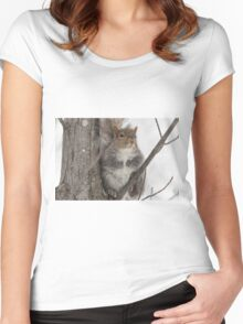 Grey squirrel in a tree Women's Fitted Scoop T-Shirt