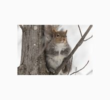 Grey squirrel in a tree Unisex T-Shirt