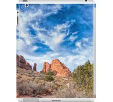Delightful Arches iPad Case/Skin