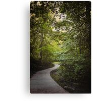 Nature Path to Light Canvas Print
