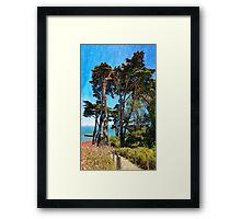 Golden Cypress Trees Framed Print