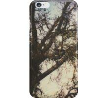 them big oak trees iPhone Case/Skin