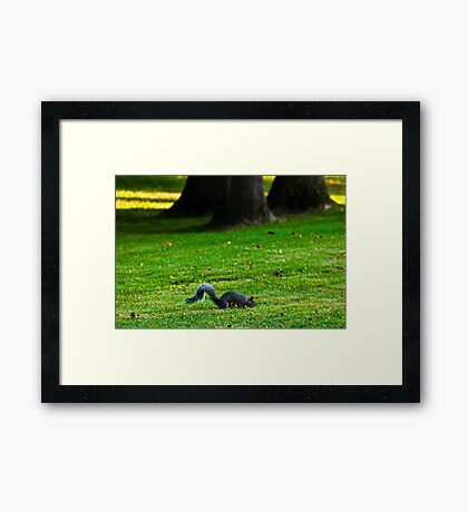 Scavenger Hunt Framed Print