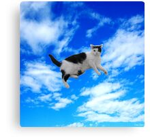 flying cute cat hipster cool sky Canvas Print