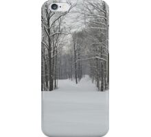 Wham winter wonderland  iPhone Case/Skin