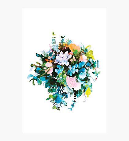 Succulent Bouquet  Photographic Print