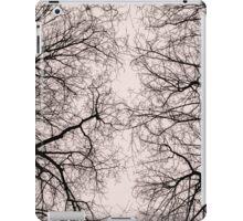 Natural abstraction iPad Case/Skin