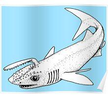 Ancient Shark Poster