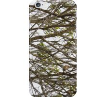 Lost in Woods iPhone Case/Skin