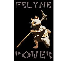Felyne Power Photographic Print