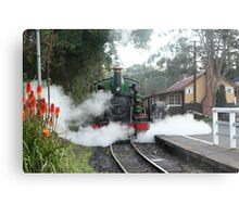 Menzies Creek Stop Metal Print