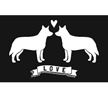 Australian Cattle Dogs in Love Photographic Print