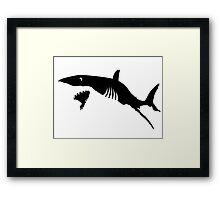 Shark Attack Framed Print