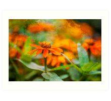 Flower Texture Art Print