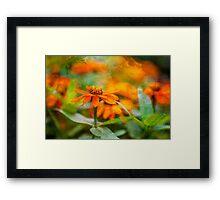 Flower Texture Framed Print