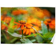 Flower Texture Poster