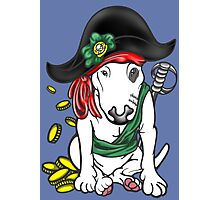 Pirate English Bull Terrier Photographic Print