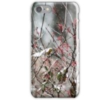 Snow - lightly falling (2010) iPhone Case/Skin