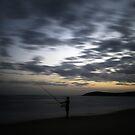sunset fish by wellman