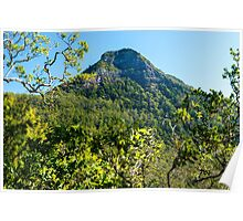 Spicers Gap Lookout in the Scenic Rim, Queensland Poster