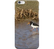 WADING iPhone Case/Skin
