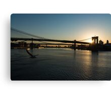 Soaring - Brooklyn Bridge Sunrise with a Seagull Canvas Print