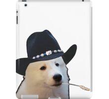 Mozart, Texas Ranger iPad Case/Skin