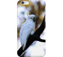 Cockatoo iPhone Case/Skin