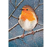 English Robin in Winter, Original Oil Pastel Wildlife Art Photographic Print