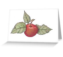Apple: Colour Pencil Art, Fruit, Realism Greeting Card