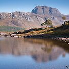 Loch Maree by Christopher Cullen